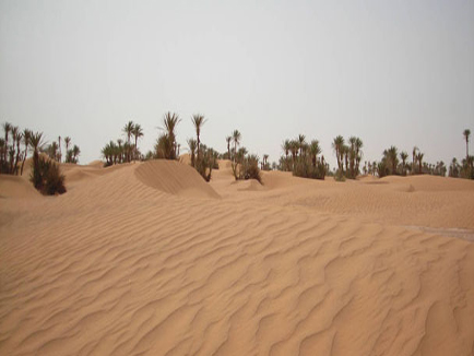 http://cinema-riad-ouarzazate.com/wp-content/uploads/2016/11/erg-juive-desert.jpg